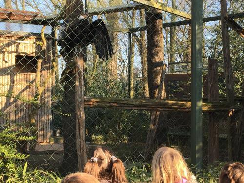 Projekt Zooschule Bild 2